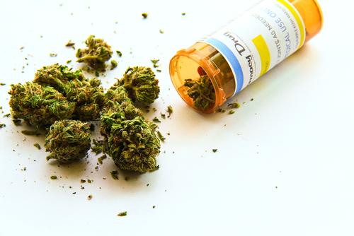Medical Marijuana Attorneys